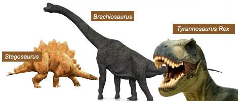 El Reino De Los Dinosaurios Animales Pasado Y Presente Extension De La Universidad De Illinois Un grupo de paleontólogos anunció el descubrimiento de la criatura más grande que ha caminado se estima que este gigantesco dinosaurio era de unos 40 metros de largo por 20 de alto, partiendo. el reino de los dinosaurios animales