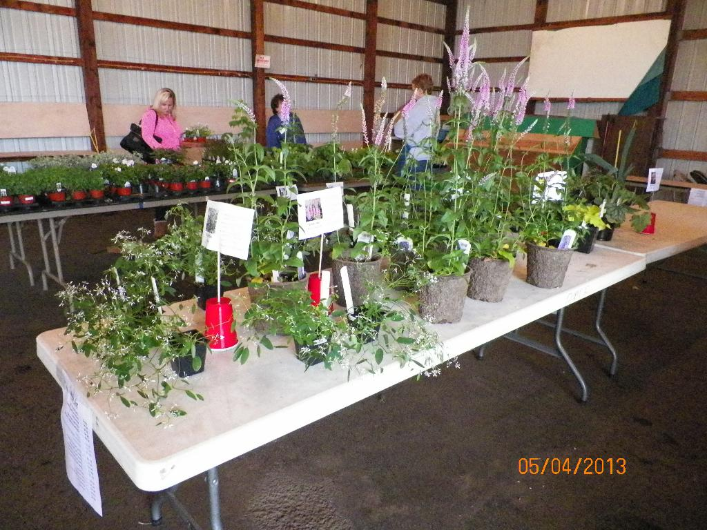 Annual Spring Plant Sale
