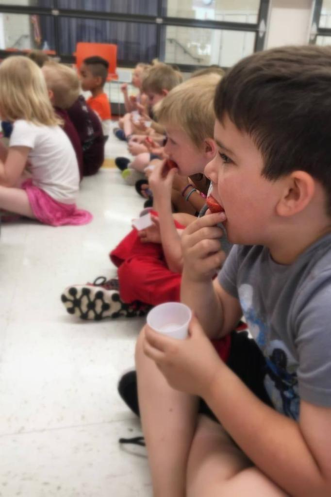 Kindergartener Gabe Wilson takes a big bite of strawberry while learning about the berry family.
