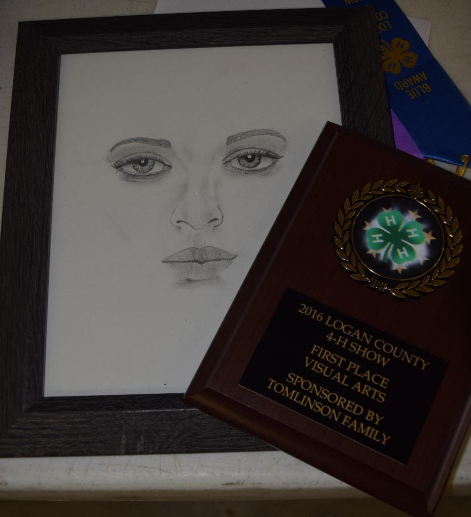First Place Visual Arts Award/Lexi Tibbs