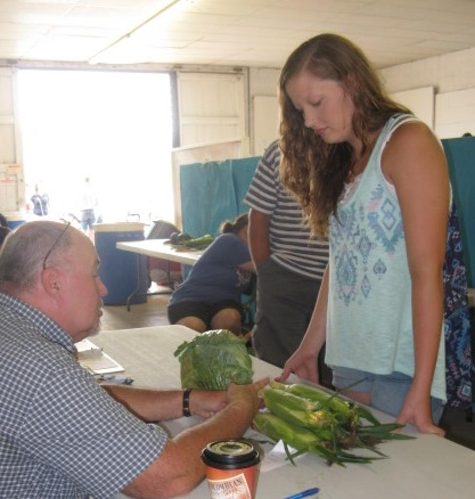 Vegetable judging