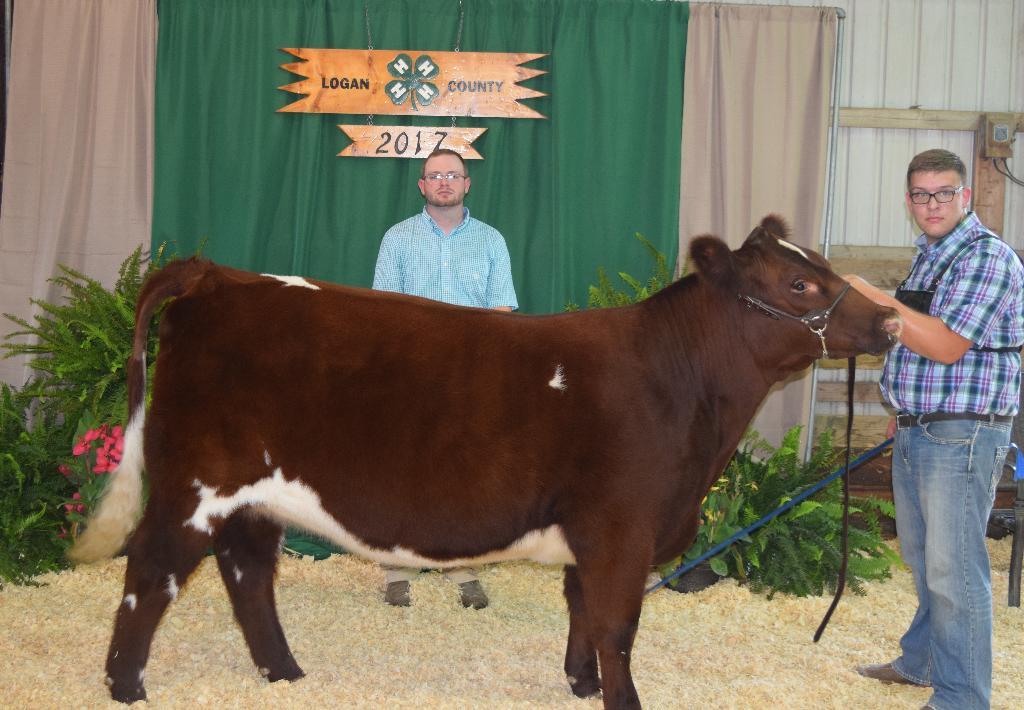 Beef show award