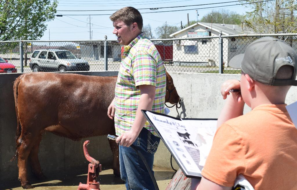 Information on washing cattle being shared