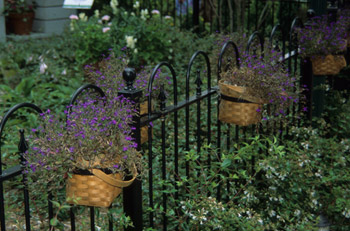 Jazz Up a Fence with Baskets Photo
