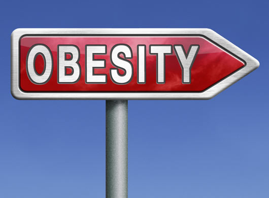 Who's to blame for obesity? Policy makers, the food industry, or individuals?