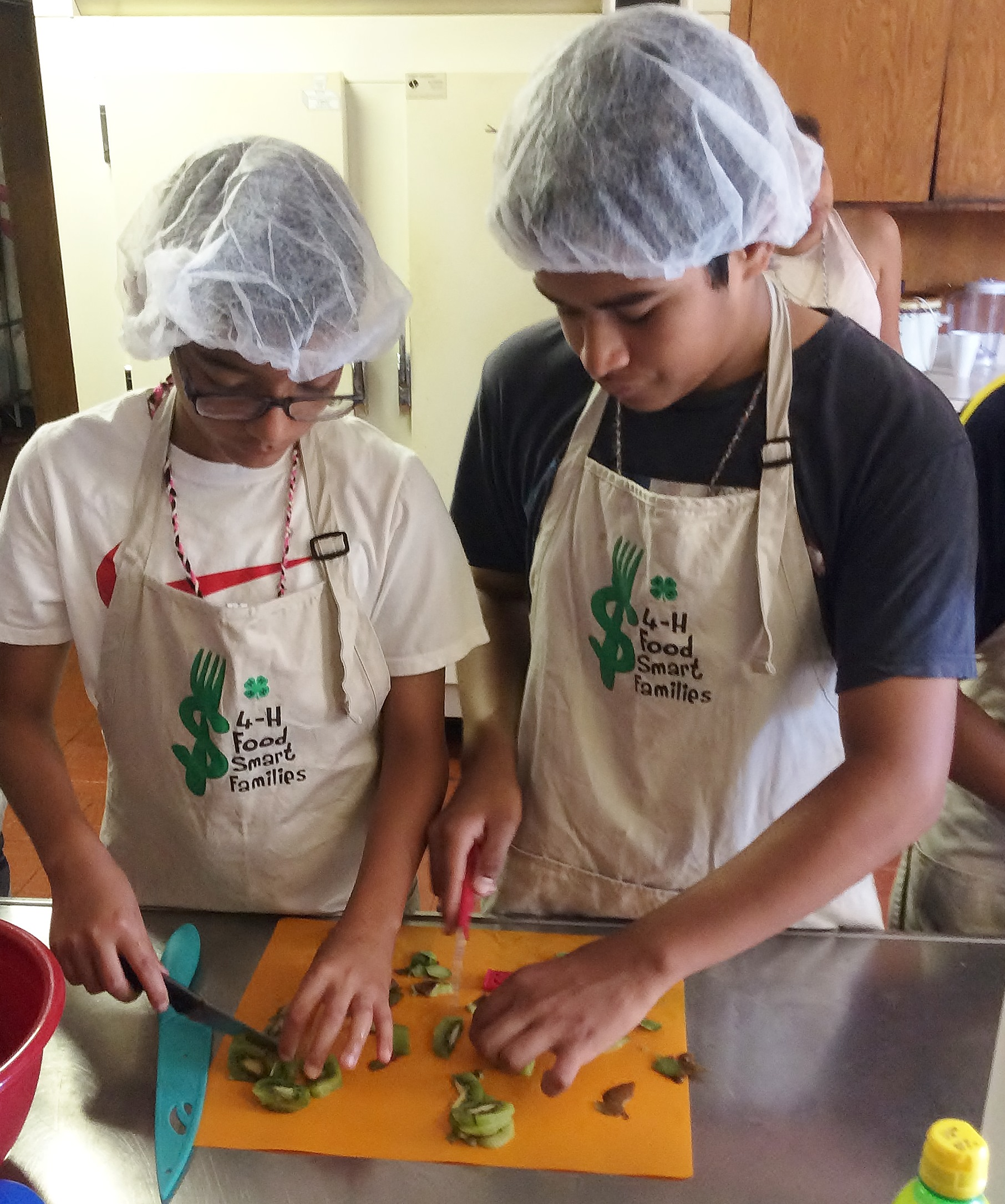 Teens teach cooking skills, become leaders in Lake, McHenry Counties