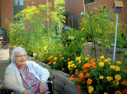 Master Gardeners Sow Seeds and Smiles with DuPage Convalescent Center Program