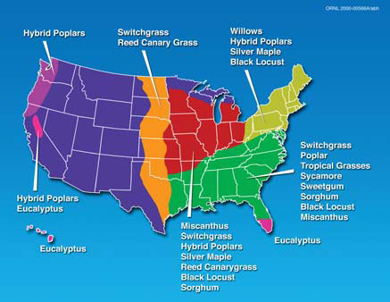 The Future Of Ethanol Cellulosic Ethanol University Of - Future map of the us
