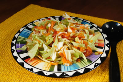 Super Easy Slaw without Noodles