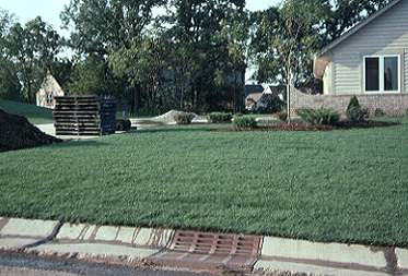 Choosing home lawn care services lawn talk university of illinois hire a lawn service to care for this newly sodded lawn or do it yourself solutioingenieria Gallery