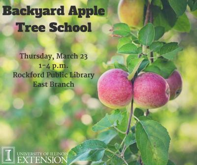 Backyard Apple Tree School