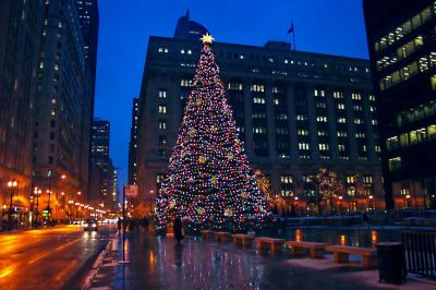 Illinois-Chicago-downtown-street-scene-Christmas