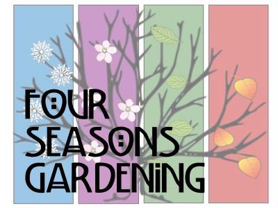 Four Seasons social media pic