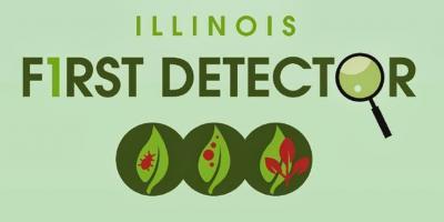 1st detector logo