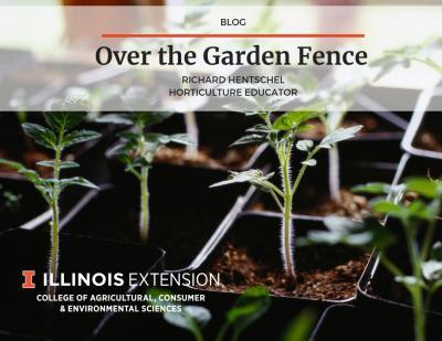 OGF seed start blog