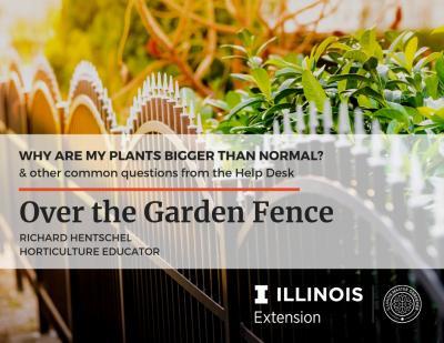 Over the Garden Fence - FAQs
