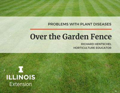 Over the Garden Fence - plant lawn diseases