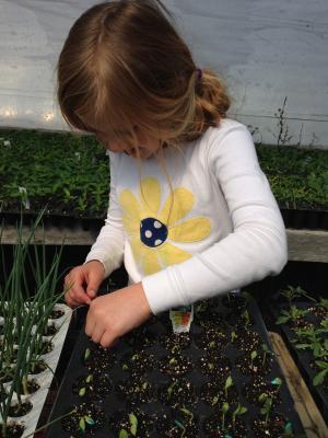 child-planting-1239078 1280