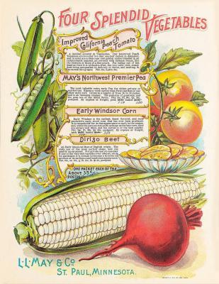 vintage-vegetables-996390 1280