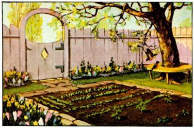 Veggie Garden Spring