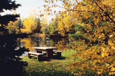 fall lake - Copy