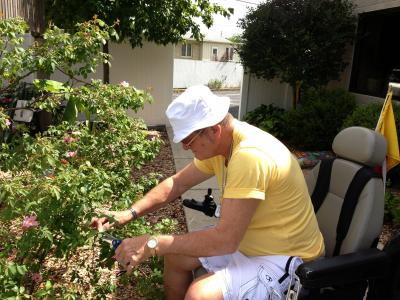 Clients help deadhead roses at InTouch
