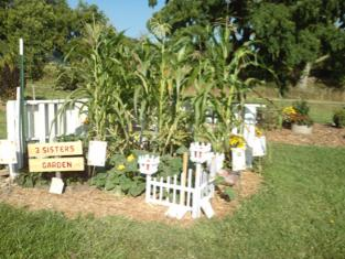 Lee County Master Gardener Three Sisters Garden.
