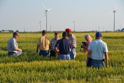 2013 Small grains meeting