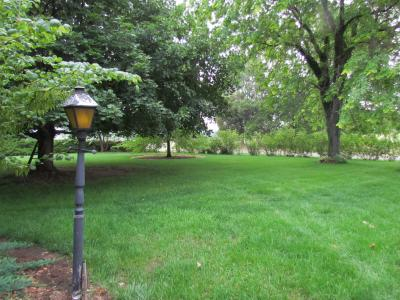 front lawn on 6-11-12