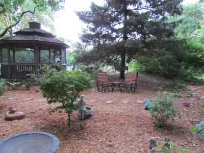 Shade garden on 7-13-12
