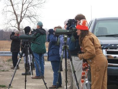 Illinois Audubon Society birding adventure
