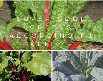 Super Cool greens