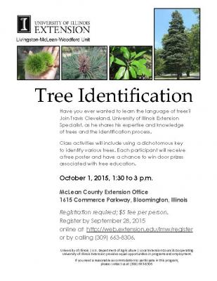 Tree Identification flyer  1