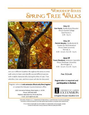 Tree Walk Series Spring