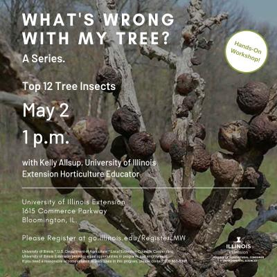 Whats wrong Tree 1
