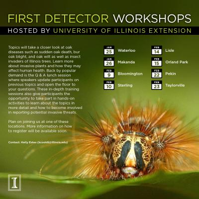FirstDetectorWorkshop SaveTheDate 2017