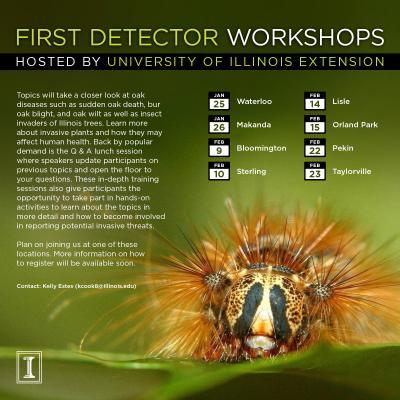 FirstDetectorWorkshop SaveTheDate 2017