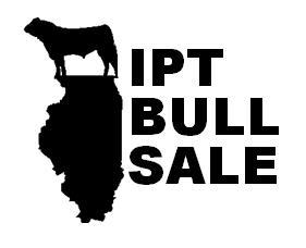 IPT Bull Sale logo