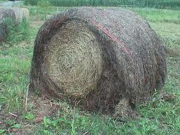 hay waste old bale