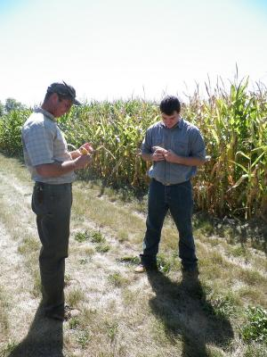 Figure. Marty Johnson (L) and Brian Mansfield (R)counting kernels at the NWIARDC.