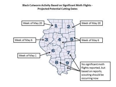 Figure. 2012 Black cutworm cutting dates (Kelly Estes).