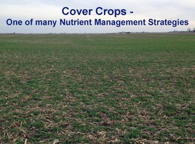 CoverCrops-INLRS