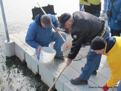 Master Naturalists learn about water quality at Emiquon.