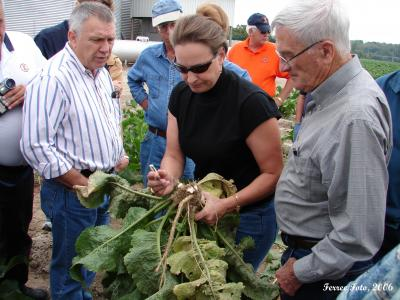 Dr. Elizabeth Wahle shows horseradish plant to fellow University of Illinois Extension Agriculture Educators