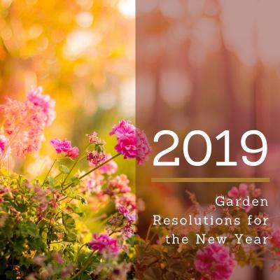 Garden Resolutions-01022019