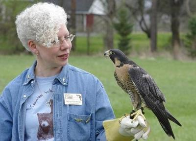 wildlife rehabilitator