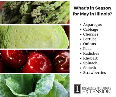 What s In Season for May in Illinois