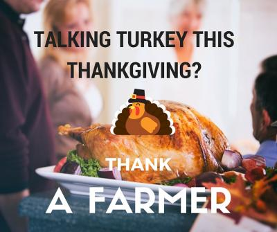 TalkingTurkey2