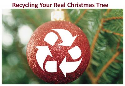 Xmas Tree-Recycle