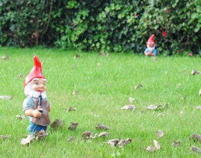 bigstock-Garden-gnomes-29593433 smaller